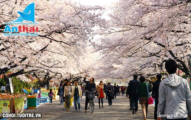Du lịch Nhật Bản 6N5Đ