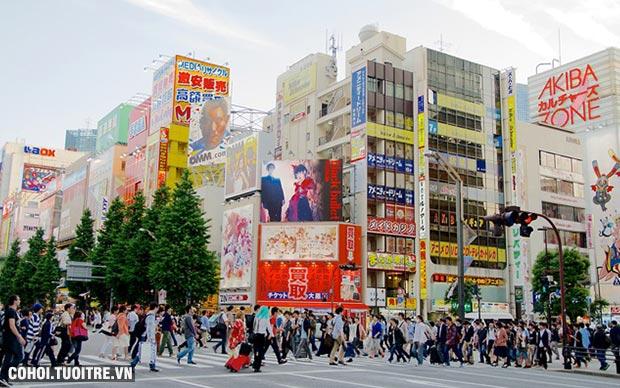 Tour du lịch Nhật Bản 5 ngày giá hấp dẫn
