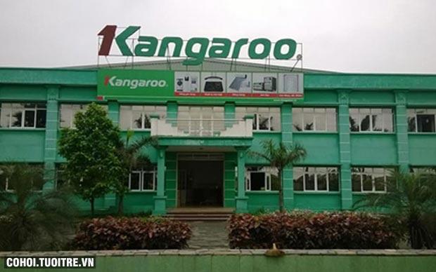 Máy làm mát không khí Kangaroo KG50F43