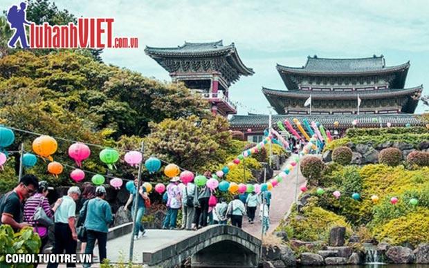 Tour Hàn Quốc 5 ngày giá rẻ, cam kết 100% đậu visa