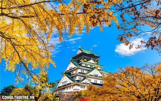 Vi vu Nhật Bản mùa thu vàng khuyến mãi 19,9 triệu