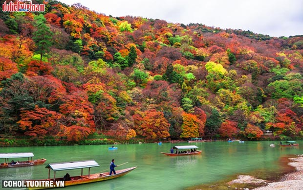 Tour Nhật Bản mùa lá đỏ - ưu đãi vàng từ 19,9 triệu đồng
