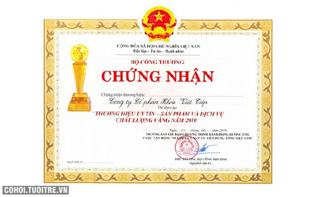 Khóa cửa chống trộm Việt Tiệp đồng bấm VT0162P