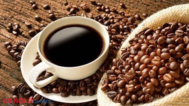 Máy pha cafe Teka CML 45