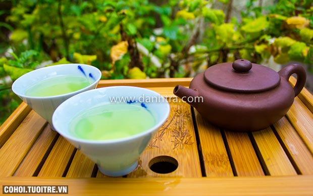 Tiến Vũ - công ty chuyên sản xuất, chế biến trà Thái Nguyên