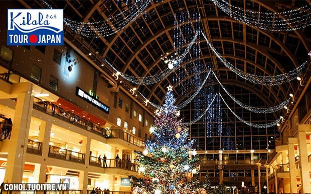 Đón Giáng sinh rộn ràng tại Nhật Bản