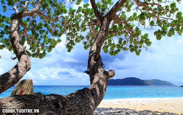 Về thăm Côn Đảo dịp lễ giỗ Cô Sáu