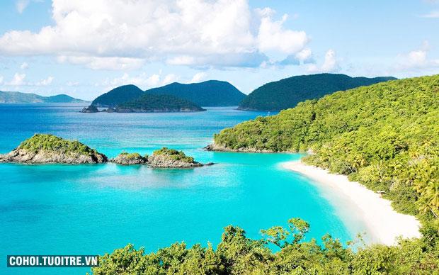 Du ngoạn Vịnh Cam Ranh - Khám phá đảo Tôm Hùm - khuyến mãi hè
