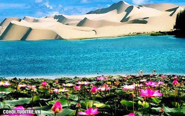 Du lịch núi Chứa Chan, Mũi Né, Phan Thiết giá rẻ