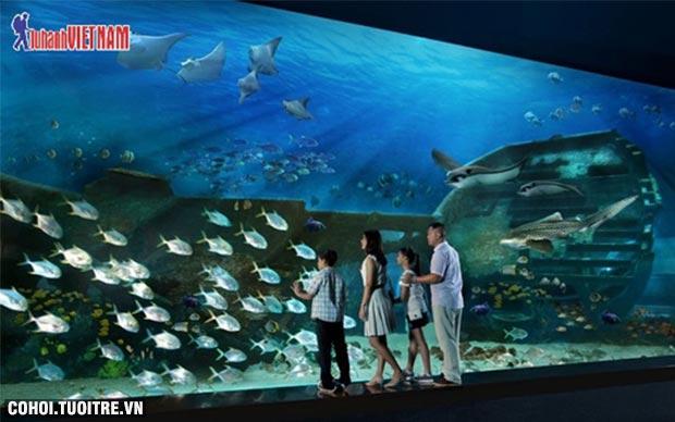 Tour liên tuyến Singapore, Indonesia, Malaysia giá từ 8,9 triệu đồng