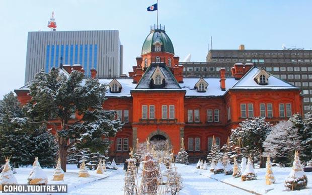Cháy vé tour charter Hokkaido - ưu đãi 6 triệu đồng
