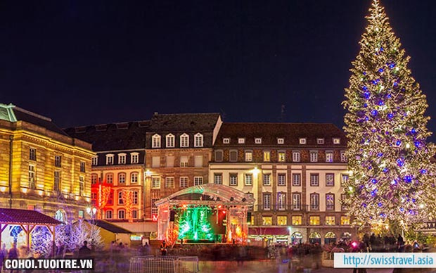 Thụy Sĩ, Áo, Séc, Hungary - Tham quan các chợ Giáng sinh