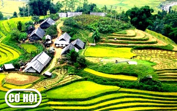 Hà Nội – Côn Sơn – Kiếp Bạc – Hạ Long – Yên Tử - Sa Pa 5 ngày 4 đêm